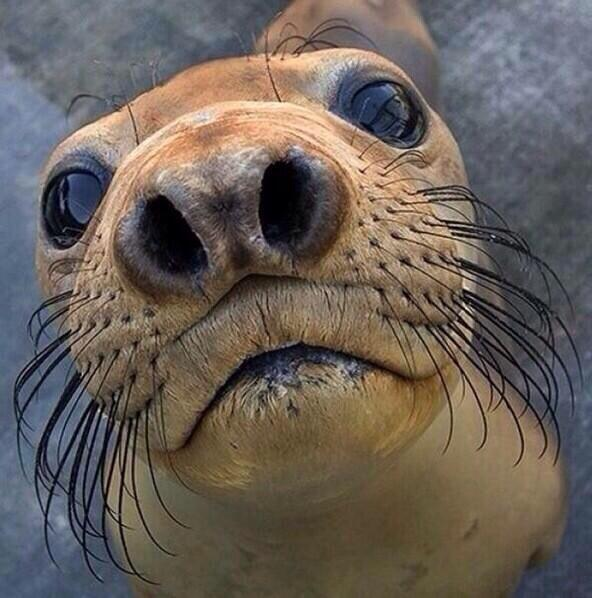 Little kids be coming up to you like, 'u got games on ur phone?!'