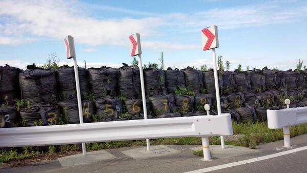 いわき市南部の海岸沿い。土嚢から草がはえてます。 http://t.co/fgtslLh1Jp