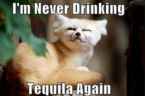 TequilaTweets™ (@AllAboutTequila) | Twitter