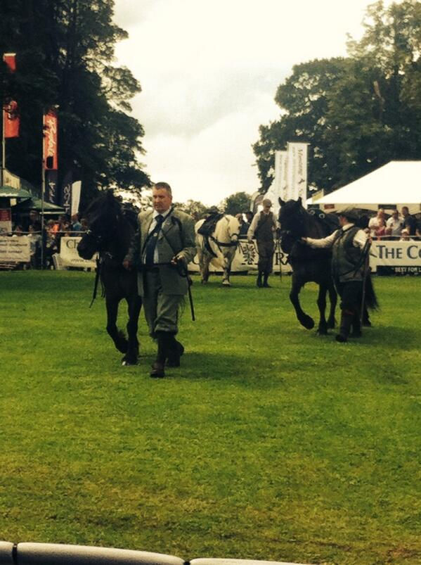 #highland #pony parade - everyone looking very smart http://t.co/2nlpQnBLd9