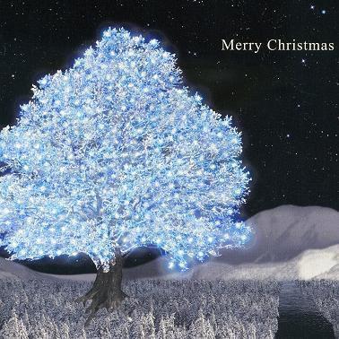 空に浮かぶ星を取って 飾りたいと言う(Merry Christmas)  #BUMPOFCHICKEN #バンプ #BUMPer #BUMPerさんと繋がりたい   BUMPが好きならRT♪ https://t.co/ud3eomuw1L