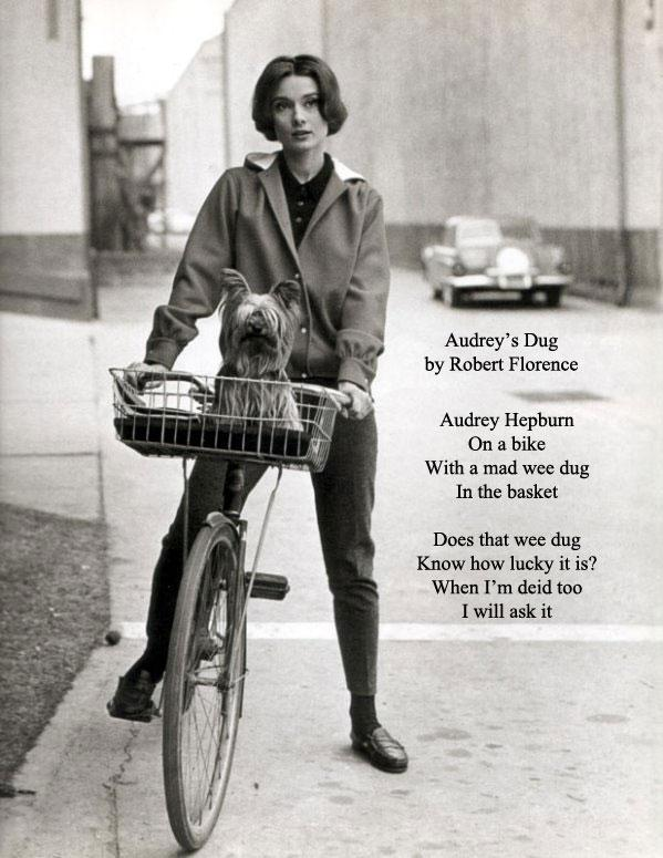 RT @robertflorence: Folks, please share my new poem: Audrey's Dug. http://t.co/VmoVYG496s