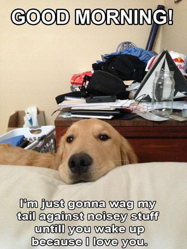 Every morning of my life... http://t.co/MSrj7OE9Fd