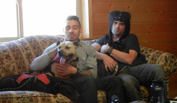 Me and #UFC fighter/commentator Dan Hardy with @VicktoryDogMel & #Vicktory Dog Handsome Dan http://t.co/pBoaXaWn3h http://t.co/XdtpQj1APp