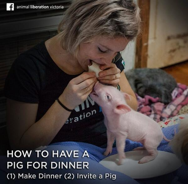 "Animal Liberation Victoria: Crazy Vegan Gal On Twitter: ""How To Have A Pig For Dinner"