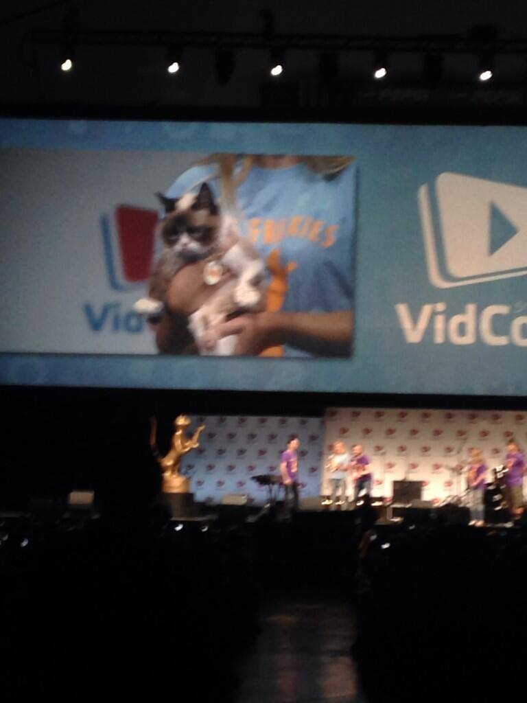 Twitter / suburbanmama: Crowd goes wild for #GrumpyCat ...