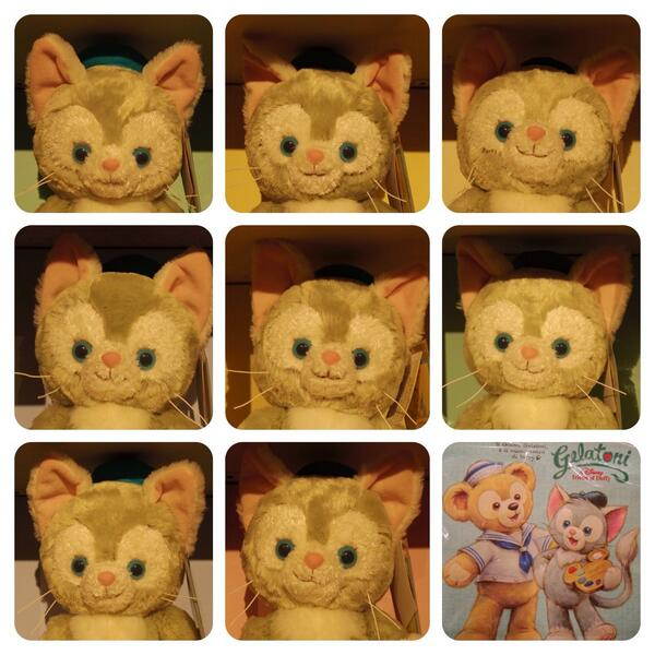 ジェラトーニのお顔。個体差見比べ用。 http://t.co/AZaNADqocl