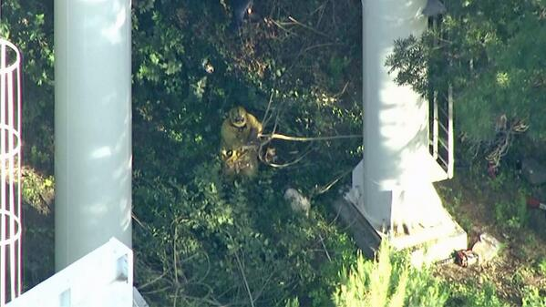 Firefighters appear to be cutting at trees near base of Ninja ride. Watch live: http://t.co/AXFJQsDKDN http://t.co/JQ2ojnVpEl