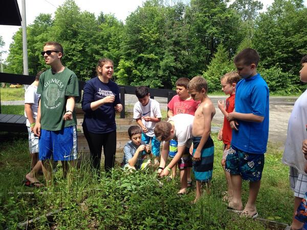 L5 is learning about herbs and spices and making tea at Camp Craft! http://t.co/vKUhx5i0Ua