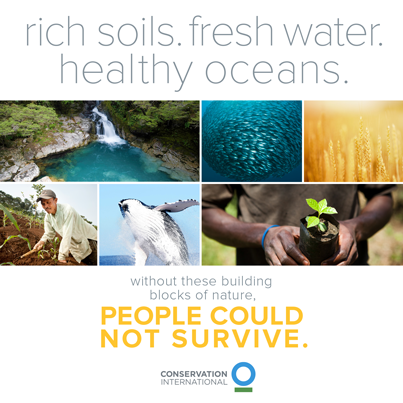 Twitter / ConservationOrg: Rich soils. Fresh #water. Healthy ...