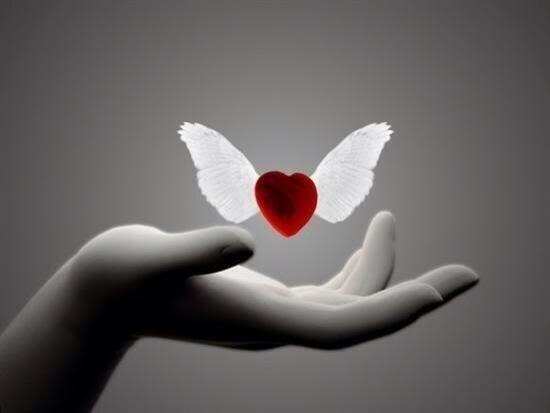 Donde estas corazón. BresVFiCUAA11J6
