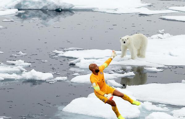 POLAR BEARS #ThingsTimHowardCouldSave  Credit: Tim Howard / Getty Images Sport Polar Bear / © Pär Edlund | Dreamstime http://t.co/Za3rIHyD60