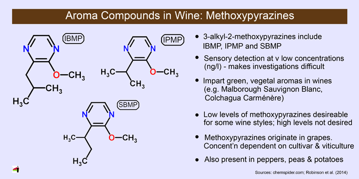 Twitter / winestats: Wine aroma compounds: ...