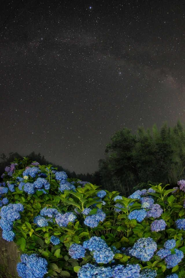 梅雨の晴れ間。夜も珍しく晴れた。