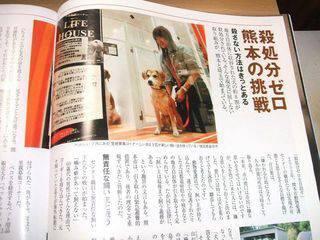 """""""@p_animal_q: この違いが殺処分の数。 熊本市:久木田憲司所長 「ちょっとでも犬の命を救える可能性があるなら、そのために全力を尽くす」 茨城県:橋本昌知事 「ガス室のボタンを押すことにさほどの苦痛はないであろう」 http://t.co/knnAkc9SJ6"""" #茨城"""