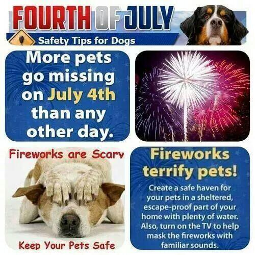 Keep your pets safe tomorrow http://t.co/n9diu1kWXk
