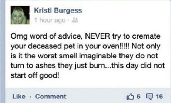 Excellent advice re not trying to cremate your pet. http://t.co/BQmo030sgI