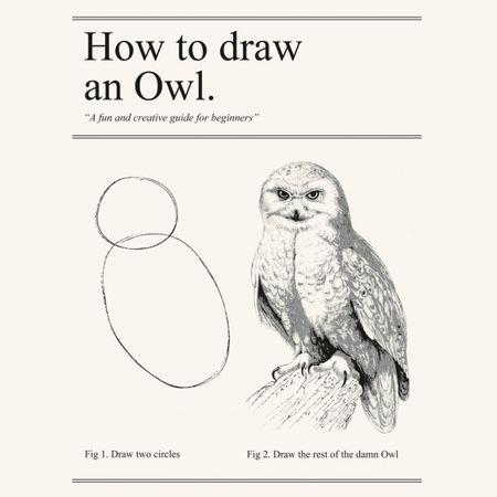 Funny On Sunday How To Draw An Owl From Experience To Meaning