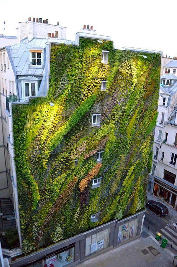 Stunning green wall by Patrick Blanc in Paris http://t.co/fYUcJronYF via @lbpaints @Boeufblogginon @honey_firefly