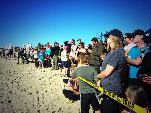 Crowd getting agitated for stranded whale #goldcoast http://t.co/5nzAwHSmVi http://t.co/t9vdQs7YfU