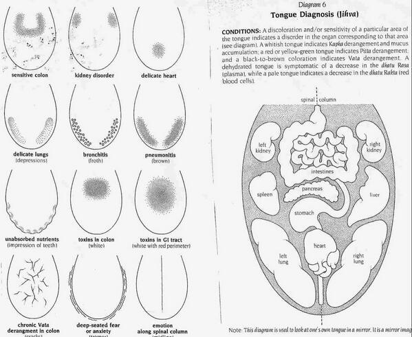 La lengua  es un mapa de la #salud. Aprende a leerla. http://t.co/r8SOlu7XA9