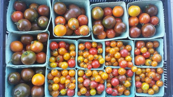 Heirloom tomatoes coming your way #vancouver @VanMarkets today! Mainstreet #farmersmarket 3:00 to 7:00 http://t.co/wXhpoTghc0