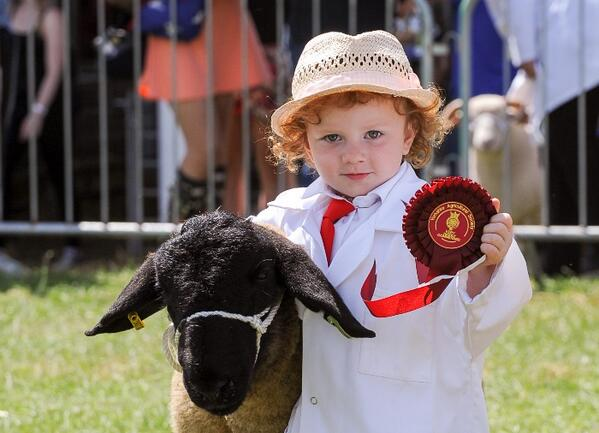 This could possibly be the cutest picture from this year's Great Yorkshire Show! #GYS http://t.co/OlFNEdV9vA