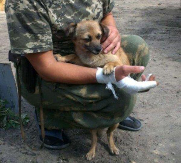 В МВД заявили о сокращении потока российских наемников на Донбасс - Цензор.НЕТ 151