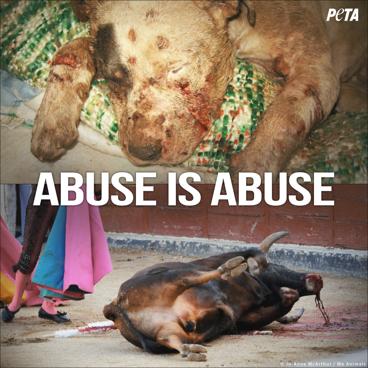 RT @peta: Forcing ANY animal to FIGHT FOR THEIR LIFE is never okay. Abuse is abuse.  RT if u agree! #Pamplona http://t.co/lM7dvENkPX