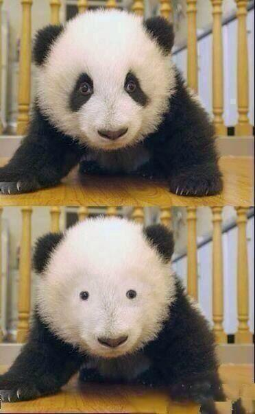 ?@iTweetFacts: How girls feel without mascara http://t.co/407RbQBI7q? lol @That_Sammy_Girl
