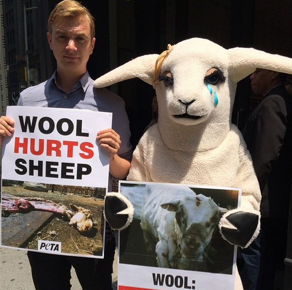 Protesting @jcrew's sale of wool from abused sheep. #wooliscruel #vegan #peta #nyc http://t.co/uioDgWq75N