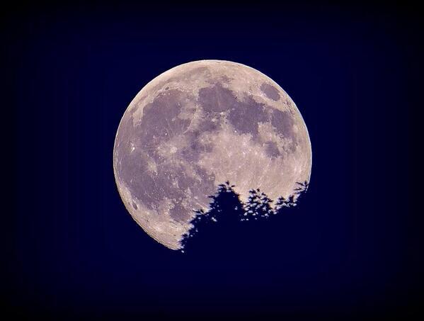 今年のスーパームーンは今夜(7/12)、8/10、9/9の3回見られるそうです🌝ちなみに今夜完全な満月になるのはこのあとすぐ!20:25ですよ🎵 pic.twitter.com/t7v0wseywZ