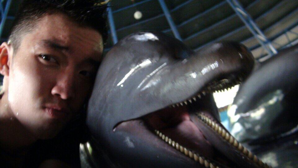 @Gavin_MJ Gavin sama Dolphin http://t.co/qObWFKyI4a