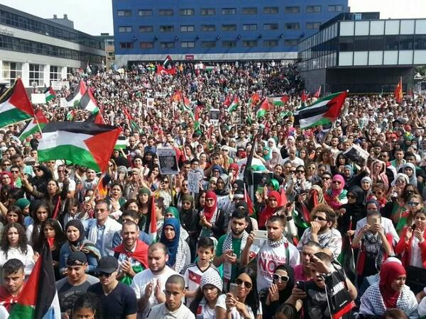 #Holland to #Palestine sending solidarity #GazaUnderAttack stop the genocide http://t.co/MERTeE6PD9