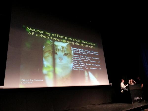 #CSFFSF2014 Eugenia Natoli is up next talking about effects of neutering in cats http://t.co/5p7uNt3xbT