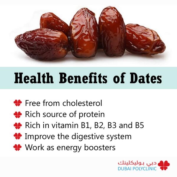 of the date palm and cultivated since approximately 6000 b c the date ...