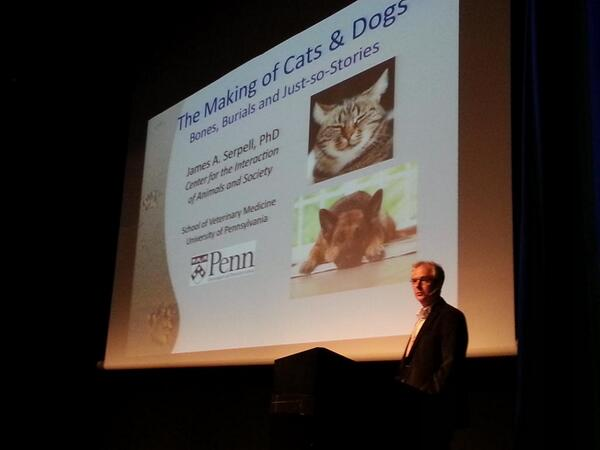 #CSFFSF2014 special extra session by Prof James Serpell from Uni of Pennsylvania http://t.co/VUtRTnkVqx