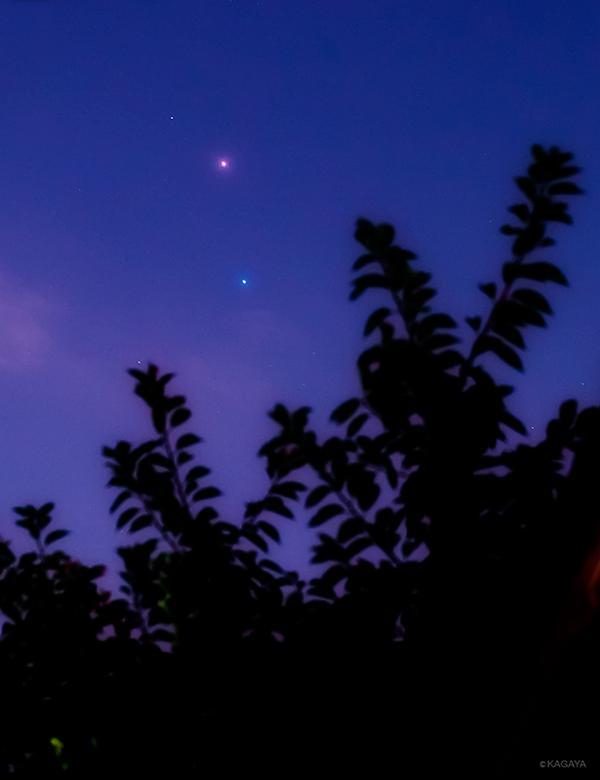 今撮影した火星とスピカです。西空低く、赤い火星と青白いスピカが仲良く並んでいます。 pic.twitter.com/kFZLBU9ax7