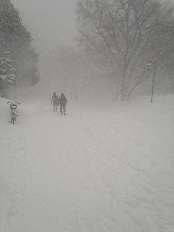 あなた方にはわからないでしょうけどねぇ!!!北大生はこんな通学路を1限レリゴーしなきゃいけないんですよぉ!!!なーにがアナと雪の女王だよ!!ありのままで生活してたら留年するわ!! pic.twitter.com/DdBhs6N9kh