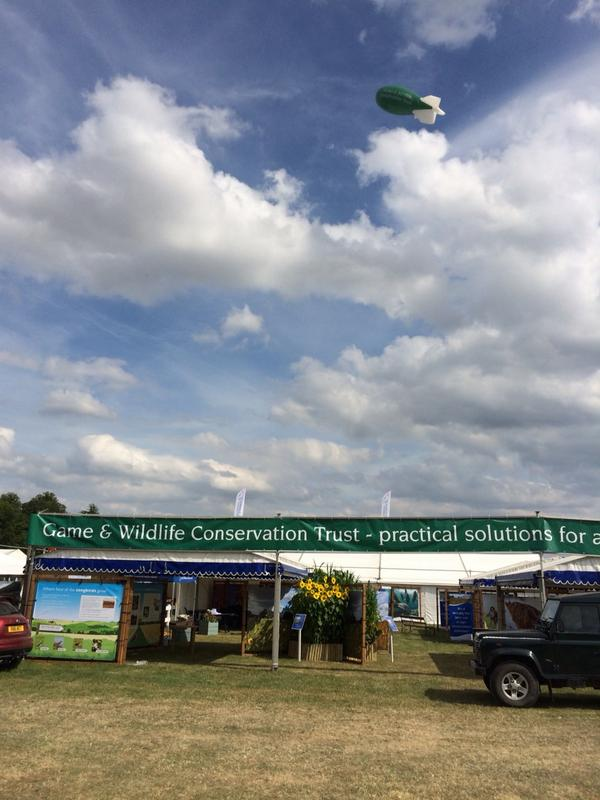 GWCT blimp is now flying above the stand @CLAGameFair. Breakfast starts at 7am tomorrow morning. http://t.co/CXarmbelz0
