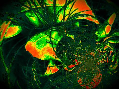 Twitter / itsumiruikjhrs: #Art #Digital warmen farben ...