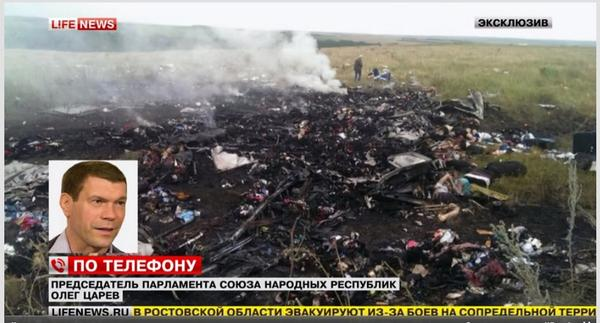 Malaysian Airlines Crash Site