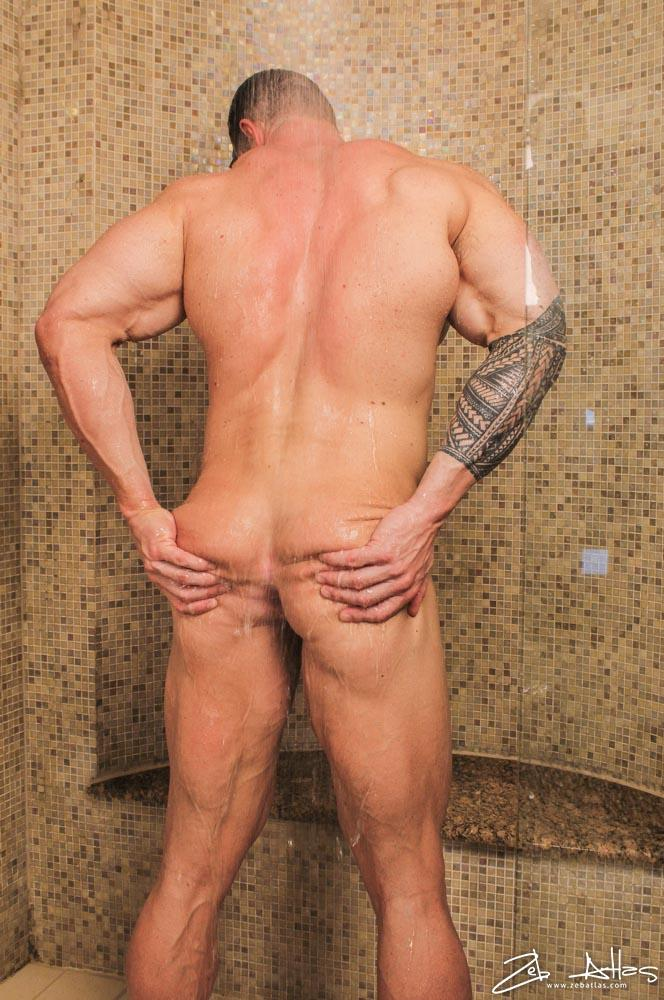 Zeb Atlas Ass 60
