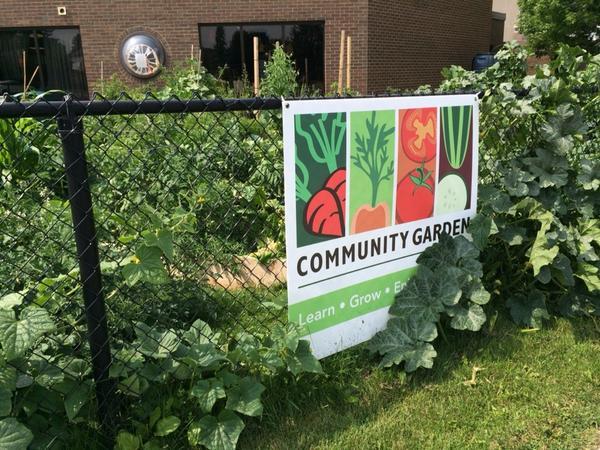 Louisa Drost On Twitter Mohawk College Community Garden