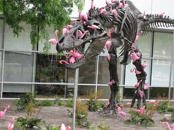 Flesh eating Flamingos Strip A T-Rex. http://t.co/GCA0KjYG1C