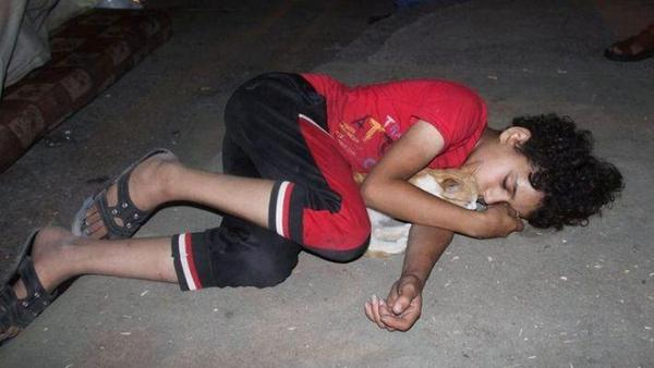 Kid Sleeping on the floor at Shifa hospital. The only thing that survived from his home was his cat http://t.co/EfYbejP6MP #Gaza