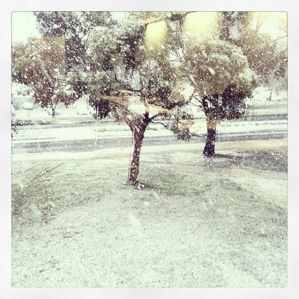 Snowing at Mt Helen today #Ballarat #Winter #FedUni http://t.co/88kOLn7ZJa