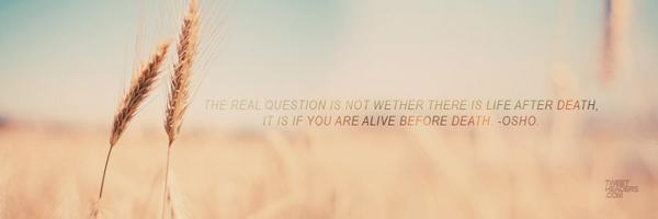 Tweet Headers On Twitter Check Out Are Inspirational Quote Twitter