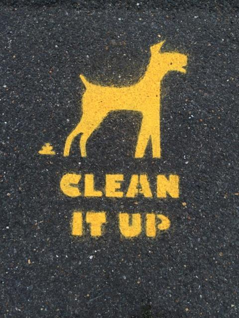 Not sure what's worse. Actual dog poo on the streets of Greenwich or these signs someone's sprayed every 3 metres. http://t.co/JZTn7Ege36
