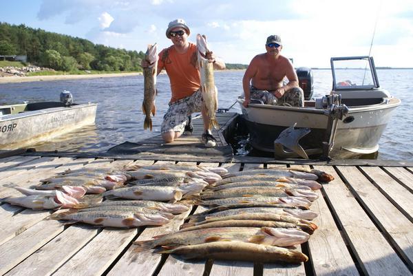 купить навигатор для охоты и рыбалки в рыбинске
